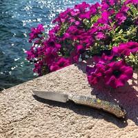 Путешествие наших чехлов и #пц_складень от @1st_tsekh продолжается. Сегодня это хорватское побережье Адриатики, что завтра- посмотрим) #русскийножевойинстаграм #ножи #первыйцех #knifeporn #knifecommunity
